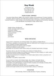 1 Media Planner Resume Templates Try Them Now Myperfectresume