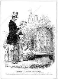 Prince Albert's Bee-Hives', 1843 - Stock Image - C042/7171 ...
