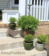 Spring Front Porch @ DaisyMaeBelle  Potted Boxwoods @ DaisyMaeBelle