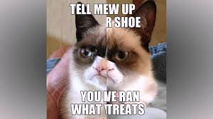 grumpy cat quotes frozen. Plain Quotes Grumpy Cat Quotes Compilation Throughout Frozen 4