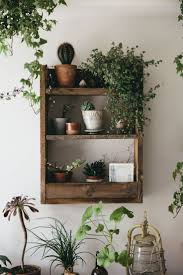Filling a space with plants and arranging them on rustic pallet wood shelves  creates such a