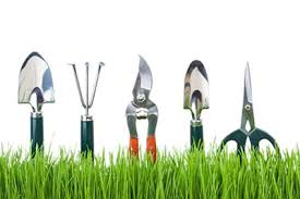 beginner gardening. Basic-gardening-tools-a-beginner-s-guide-400 Beginner Gardening