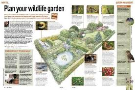 Small Picture How to start a wildlife garden Discover Wildlife