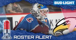 Colorado Eagles Seating Chart Eagles Recall Goaltender Hunter Miska From Grizzlies