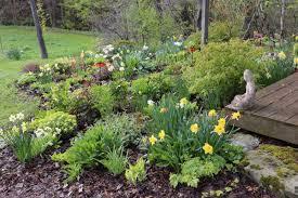 best garden plants. Best-Companion-Plants-For-Hostas\u2014Longfield-Gardens Best Garden Plants