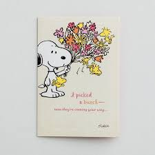 Get Well Card Peanuts Get Well 12 Boxed Cards