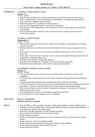 Internal Audit Intern Resume Samples Velvet Jobs