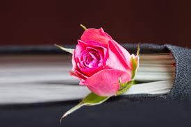 Les plus beaux textes et poèmes inspirants – Mieux traverser le deuil