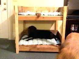 wooden dog bed plans bunk pet to build diy frame palle