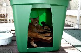 diy outdoor dog shelter help out a feral cat by making this and easy shelter
