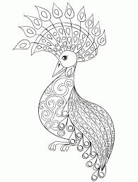 Peacock Coloring Pages For Adults Hwnsurfme