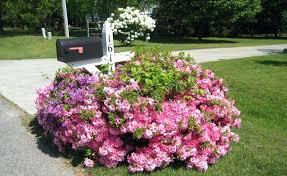 landscaping around mailbox post. Landscaping Around Mailbox Post Garden Ideas E