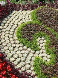 Cactus Succulent Landscape Design Wonderful Succulent Garden Ideas For You Cacti Succulents