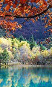 fall nature backgrounds. Best Views Of Nature Fall Season Wallpaper Screenshot 3/6 Backgrounds