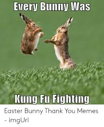 Every Bunny Was Kung Fu Fighting Easter Bunny Thank You Memes - imgUrl |  Easter Meme on ME.ME
