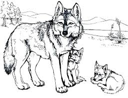 Printable Wolf Free Printable Wolf Coloring Pages Wolves Coloring