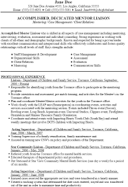 Gallery Of Mentoring Social Work Resume Objectives Professional