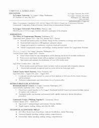 Fantastic Extra Curricular Activities Cv Sample Images Resume