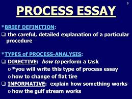 process essay life is a process essay cognitive social   essay cognitive social development 3 3