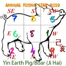 2019 Flying Star Xuan Kong Annual Analysis For Year Of The