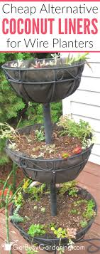A Cheap Alternative To Coconut Liners For Hanging Baskets Planters
