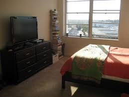 Apartment Bedroom  Lovely Apartment Bedroom Ideas Bedroom College - College apartment bedrooms
