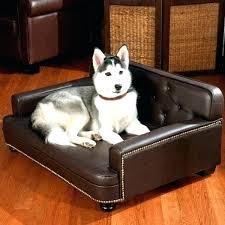 best couch for dog owners fresh best couch fabric for dogs for nice best couch for dog owners fancy about remodel best leather couch for dog owners