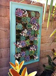 31 nestle succulents in a beautiful frame