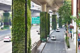 the via verde project aims to transform more than 1 000 concrete columns into a more than 60 000 square meters of vertical gardens that support mexico