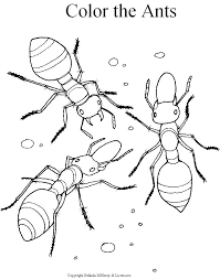 Ant Coloring Pages Printable For Kids Preschool Coloring Pages