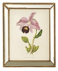 720 00 on orchids wall art with two s company orchid wall art prints in mirror antiqued gold frame