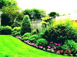 backyard design landscaping. Design Backyard Landscape Privacy Landscaping Ideas For Outdoor Patio Screen