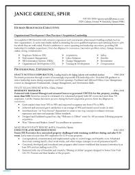 Executive Resume Writing Service Resume Writers In Nyc Valid Resume