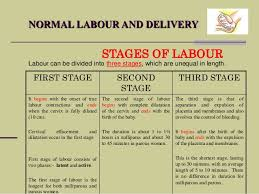 Phases Of Labor Chart Normal Labour And Delivery