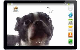 Cute dog licking screen for Android ...