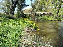 Photo Competition Winners (and full gallery) - Don Catchment Rivers Trust