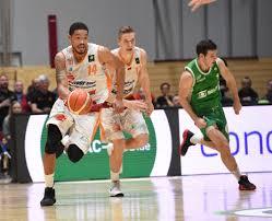 Basketball: Niners eilen von Sieg zu Sieg | Freie Presse - Sport-Mix