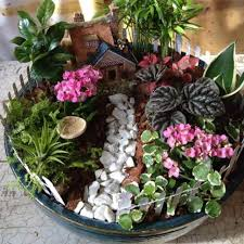 Small Picture 236 best Dish Gardens images on Pinterest Fairies garden Mini