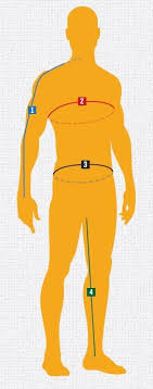 Clothing Size And Fit Charts