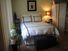 One Bedroom Decorating Cheap One Bedroom Apartments Style Interesting Interior Design Ideas