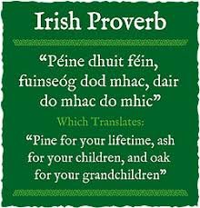 Irish Quotes About Life Irish Proverbs and Sayings World Cultures European 41