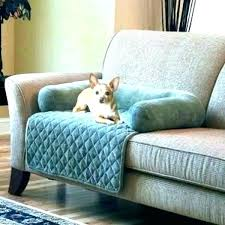 pet covers for leather sofa couch couches cover dog sofas