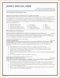 Sample Resume Procurement Executive Beautiful Collection Resume