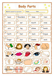 Worksheets Pages : Fabulous Teaching Body Parts In Spanish Worksheet ...