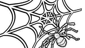 Spider Pattern Printable Spider Template Printable Provadia Info