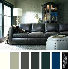 leather couch colors best color palettes images on brown what rug sofa amazing ideas for living