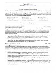 What Your Professional Resume Samples Template Online | Resume Template