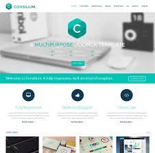 Best Website Templates Stunning Good Website Templates Pakbadminton