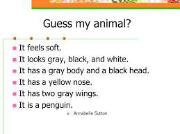 Our Animal Descriptions Can you guess which stuffed animal we each  described? - ppt download