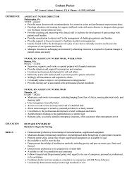 Assistant Nurse Resume Samples Velvet Jobs